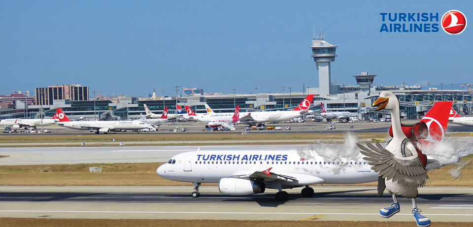 Turkish Airlines promocija